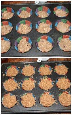 Whole wheat Apple Cranberry muffins